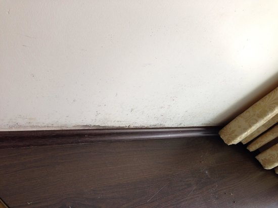 Buyukada Kumsal Butik Otel: Schimmel an der Wand