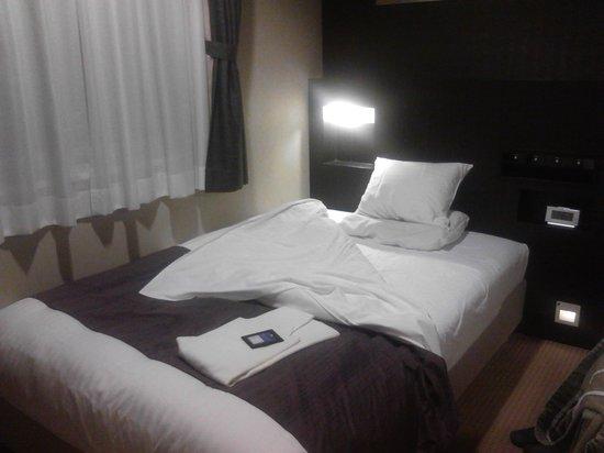 Hotel Mystays Nishi Shinjuku : The room from the door