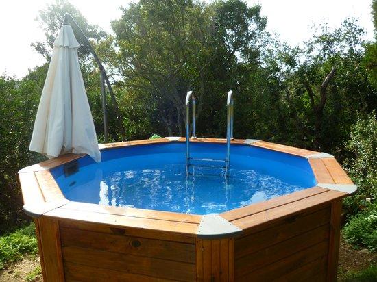 petite piscine avec jacuzzi. Black Bedroom Furniture Sets. Home Design Ideas