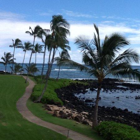 Sheraton Kauai Resort : View from room