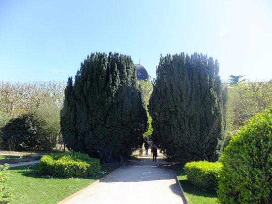 Jardin des Plantes : вход