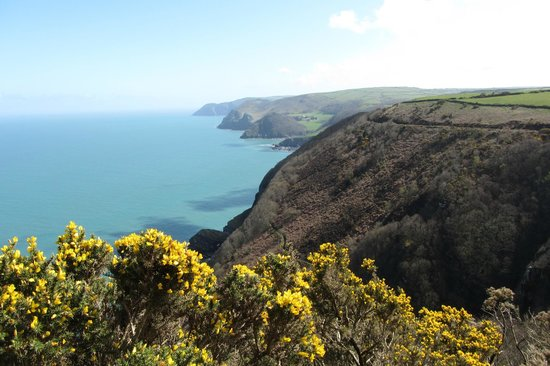 The Old Rectory Hotel: One of the stunning views on the Woody Bay walk