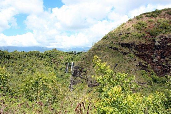 Opaekaa Falls: Opaeka'a Falls