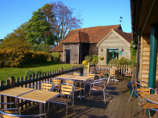 Forest Row, UK: Coffee Shop