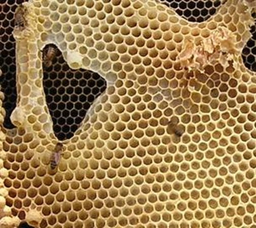 Les Trois Acres/Three Acres : 3acres Honey Comb