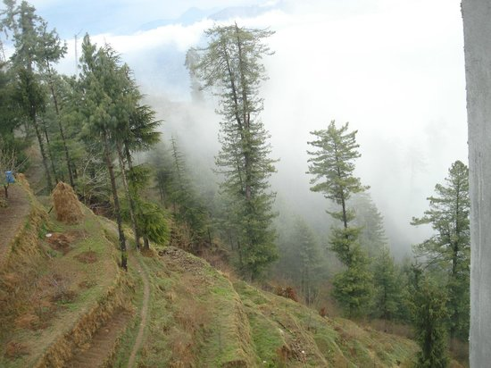 The Wilderness: VIEW ON A MISTY DAY