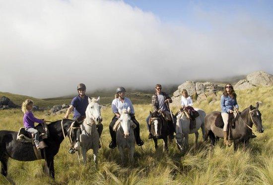 Dos Lunas Horse RIding Lodge : The view
