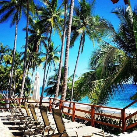 Tango Mar Beachfront Boutique Hotel & Villas : heaven!