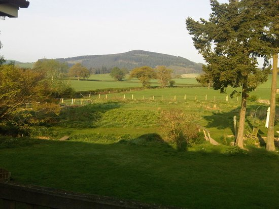 Hopton House Bed and Breakfast : Paddock Room View