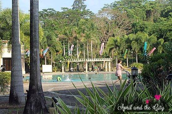 Subic Holiday Villas : Pool area