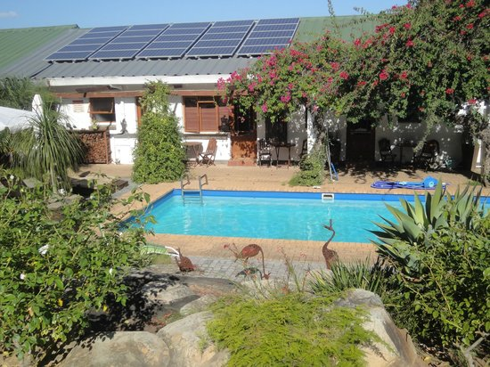 Marula Lodge Guesthouse: Pool mit Liegen