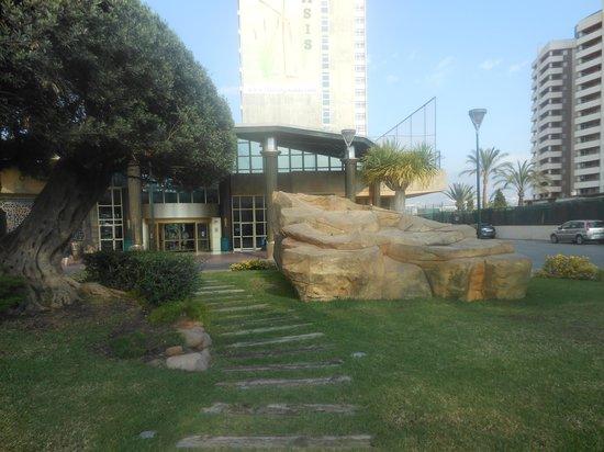 Hotel Flamingo Oasis: Jardineshotel