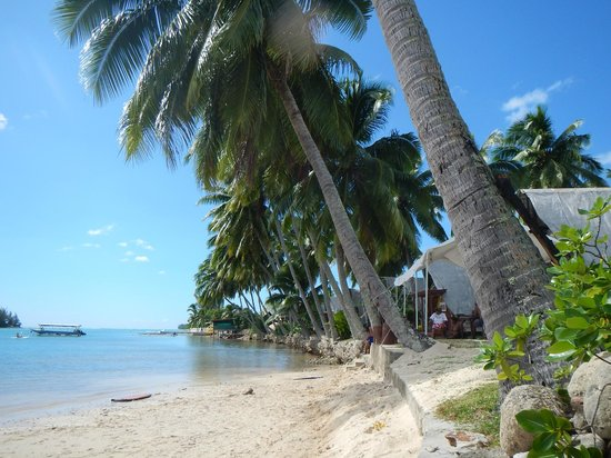 Tapu Lodge: Small beach across the street