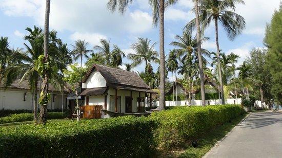 SALA Samui Choengmon Beach Resort: Resort