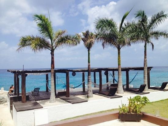Hotel B Cozumel : hammocks
