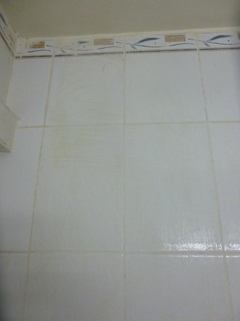 Hotel Ouarzazate Le Riad: Disgustingly dirty tiles in the bathroom