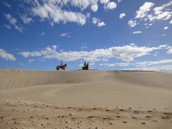 Papiesfontein Beach Horse Rides : Reiten in den Dünen