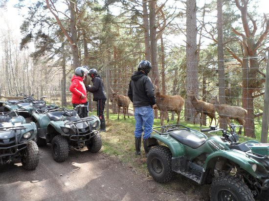 Quad Bike Treks Aviemore: excellent trekking