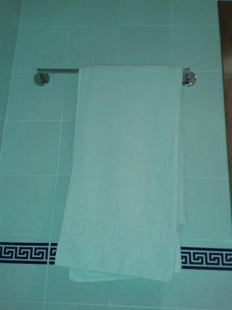 Apartamentos Torrelaguna: toallas en baño