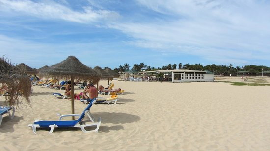 Hotel Oasis Belorizonte : Hotel's beach area