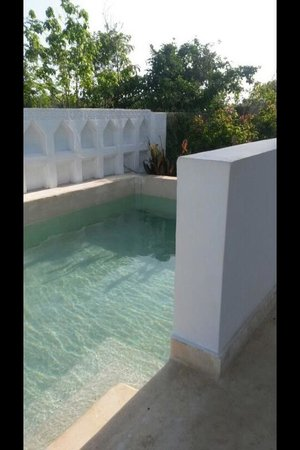 Hotel Sonrisa: Private pool