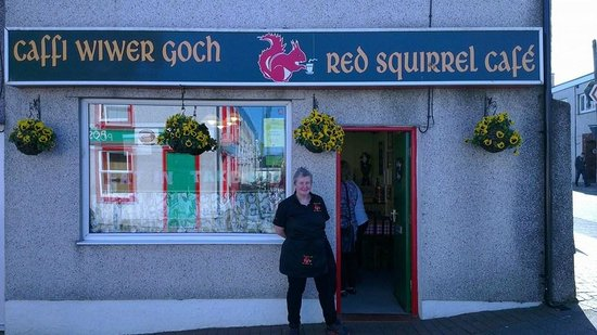 Caffi Wiwer Goch - Red Squirrel Café