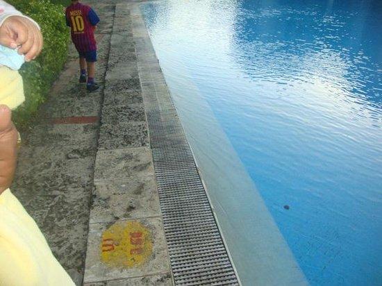 Hotel Club Acuario: piscina