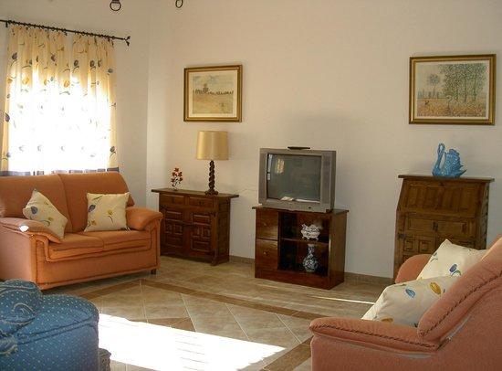 Casa Rural La Cuesta del Rio: Salón de televisión