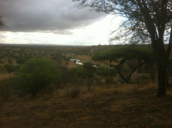 Tarangire Safari Lodge: A short afternoon storm