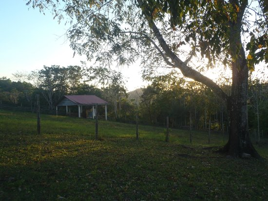 Table Rock Jungle Lodge : Farm