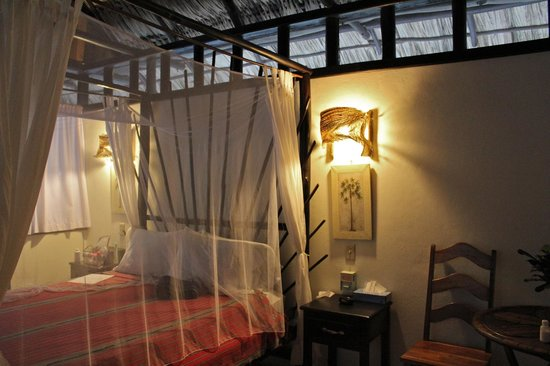 Table Rock Jungle Lodge : Mot mot room
