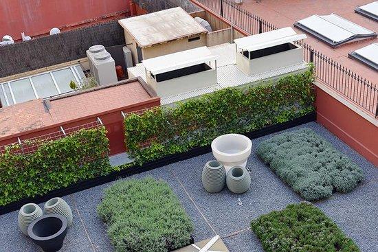 Sixtytwo Hotel: The Zen Garden