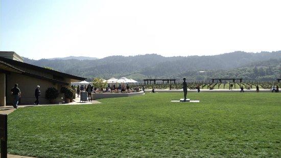 Robert Mondavi Winery: Jardim