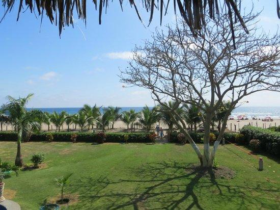 Hostal Kundalini: hermoso jardin junto a la playa
