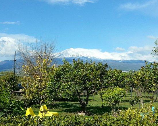 B&B Villa Maria Giovanna: Blick von der Frühstücksterrasse