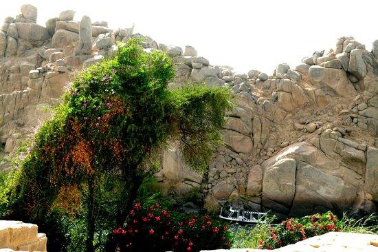 Philae Island : site autour du temple