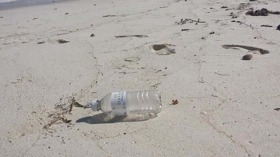 Dreams Tulum Resort & Spa: Plastic bottle left by some resort guest