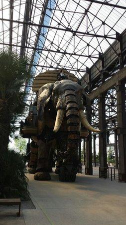 Les Machines de L'ile : Mechanische olifant
