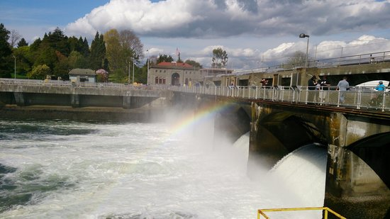 Hiram M. Chittenden Locks : 風景不錯