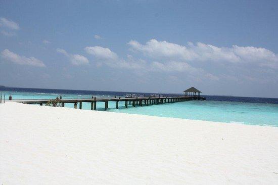 Adaaran Select Meedhupparu : North jetty. Great for snorkeling!