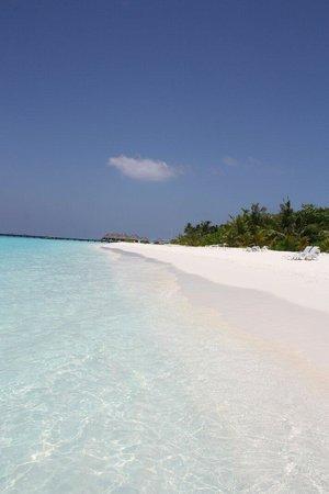 Adaaran Select Meedhupparu : Perfect beach
