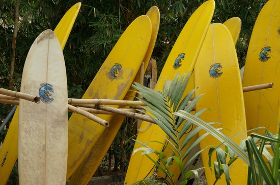 Corky Carroll's Surf School: Day's End