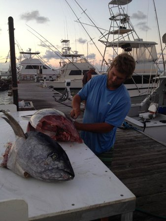 Jade Hook Charters: Capt Ryan preparing our Yellow fin Tuna to take home