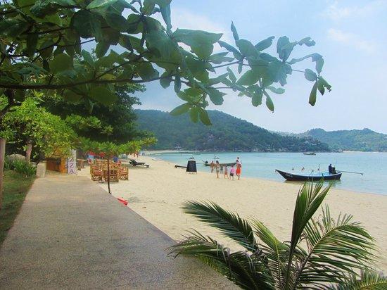 Starlight Resort: Quiet, lovely beach