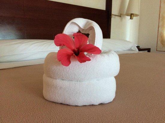 Paradisus Rio de Oro Resort & Spa: Sculpted towels