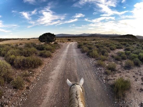 Madi-Madi Karoo Safari Lodge: Horseriding with Fred