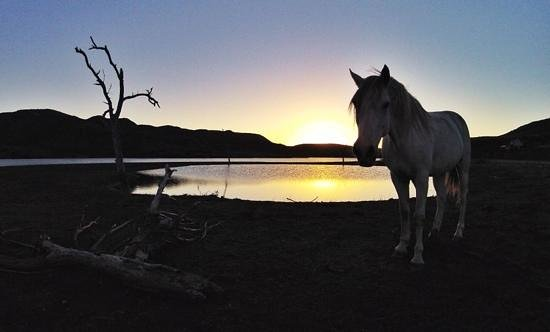 Madi-Madi Karoo Safari Lodge: Sunset March 2014