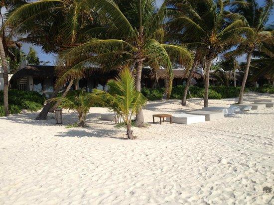 The Beach Tulum: Beach Front