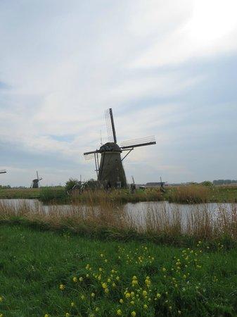 Réseau de moulins de Kinderdijk-Elshout : На первый взгляд, все мельницы одинаковы, но, если присмотреться - у каждой - своё лицо :)