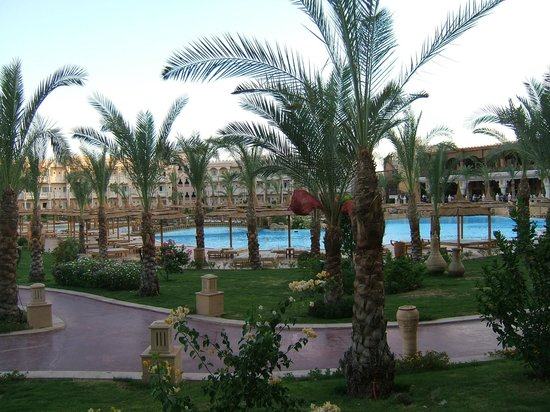 Albatros Palace Resort: piscine
